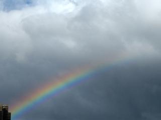 ビルからかかる虹, rainbow