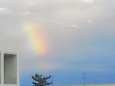 雨上がりの虹, a rainbow at school