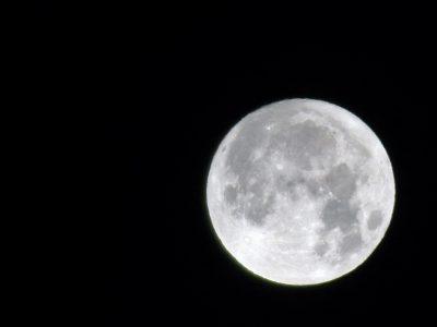 仲秋の名月, the harvest moon