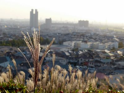 高台から見下ろす秋の街,the autumn town from the hill