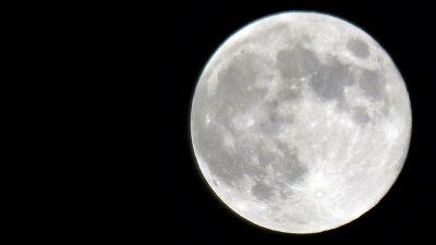 5月7日の満月,flower moon