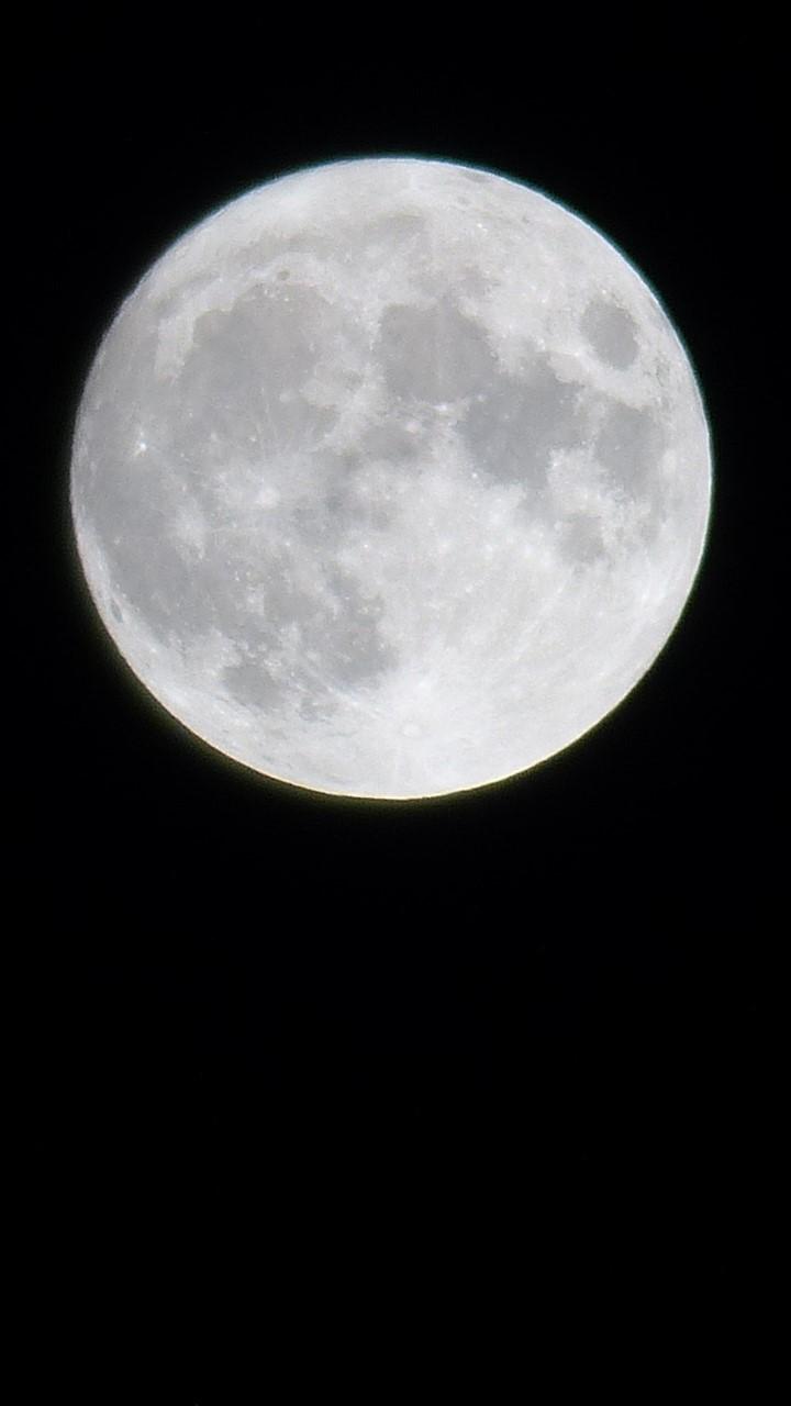 2020年の中秋の名月, the harvest moon